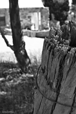 Moculta Fence Post