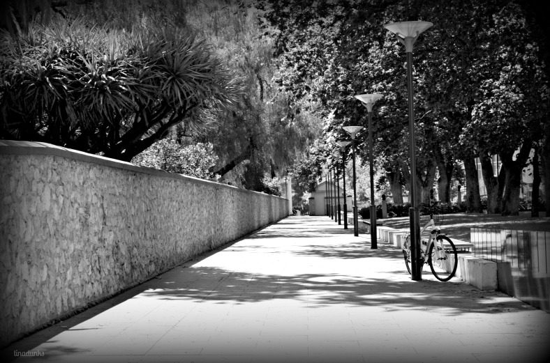 This is the footpath that runs along the wall of South Australia's Government House, situated along North Terrace in Adelaide.