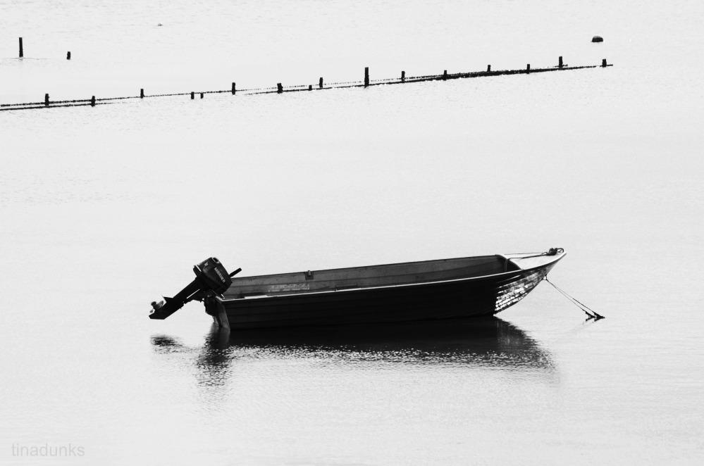 Coffin Bay (6/6)