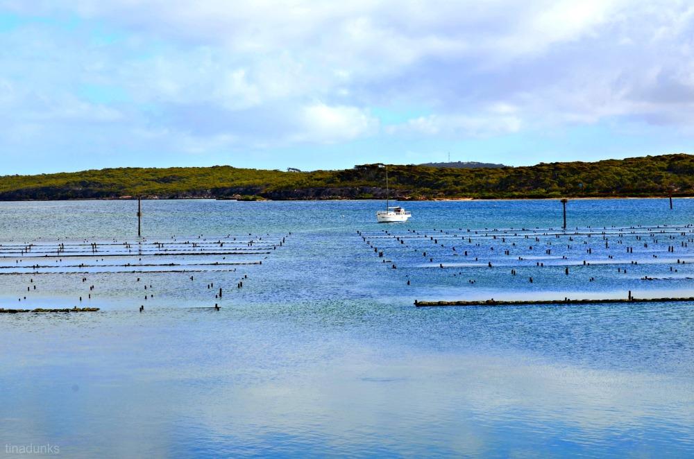 Coffin Bay (1/6)