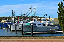 Port Lincoln Marina