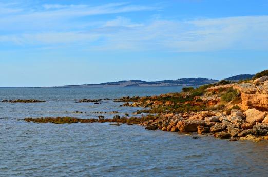 Small Bay near Port Lincoln