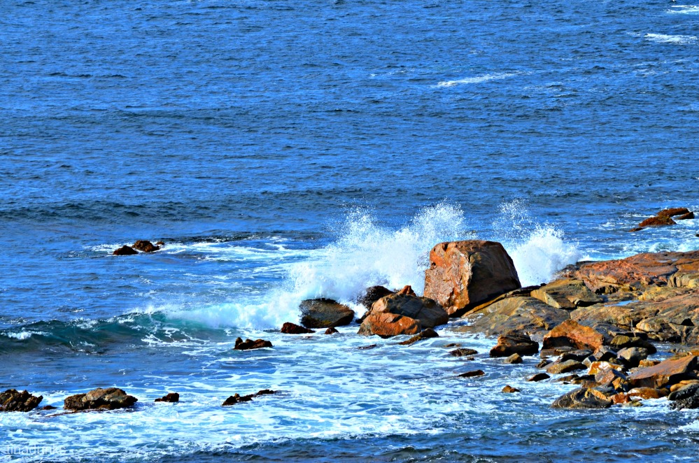 Whalers Way (1/5)