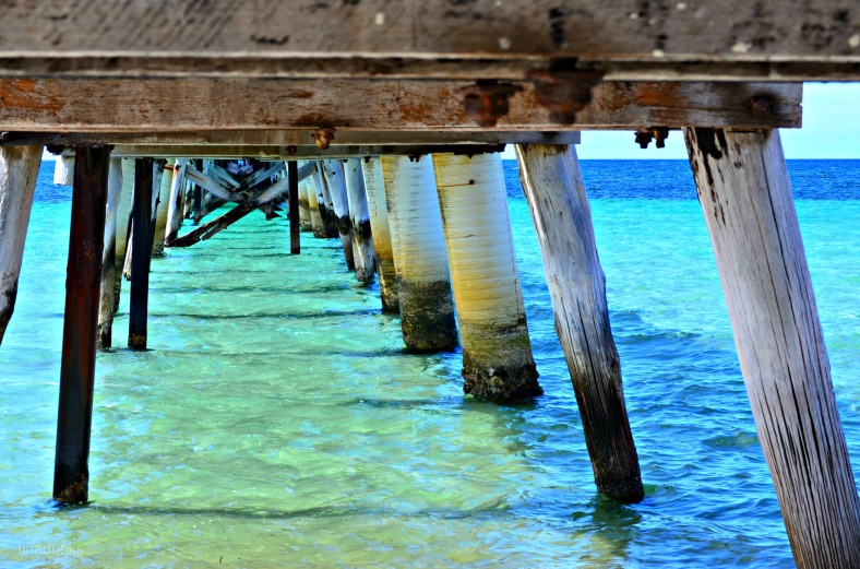 My favourite spot.....under the Tumby Bay Jetty