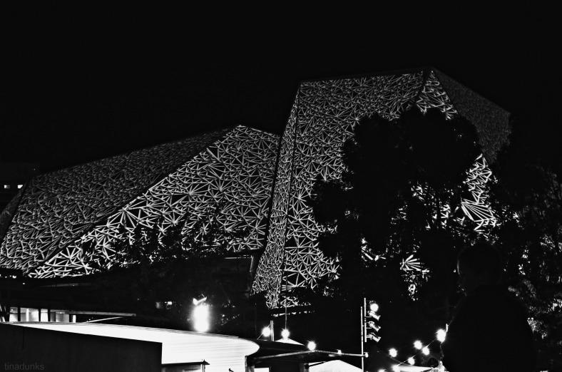 Festival Theatre Roof