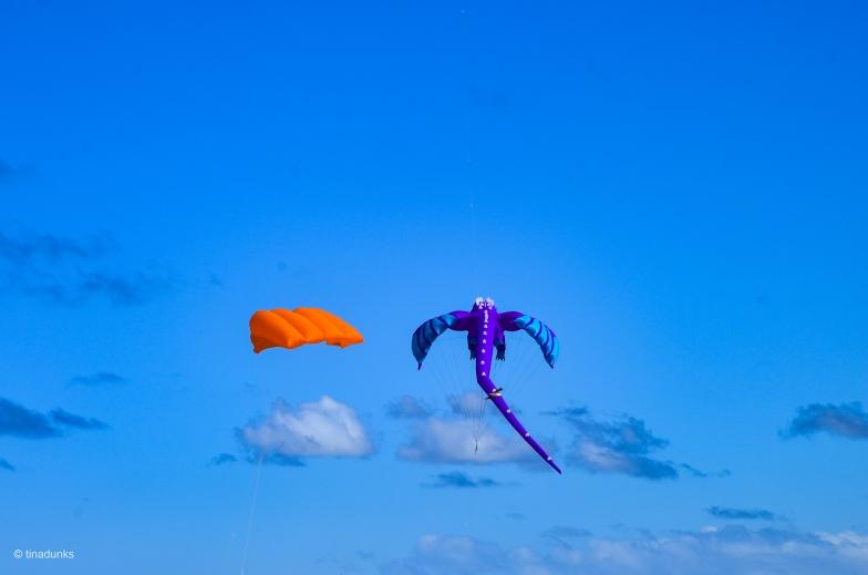 Kites 1