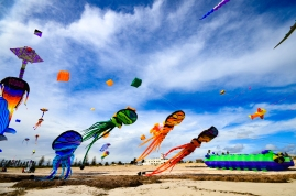 Kites 33