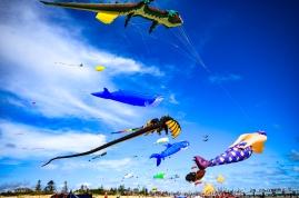 Kites 34