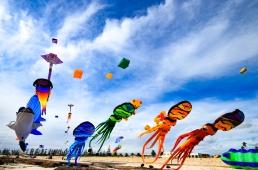 Kites 35