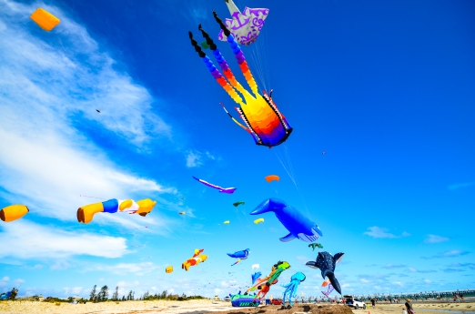 Kites 37