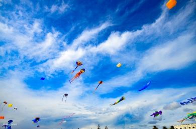 Kites 38